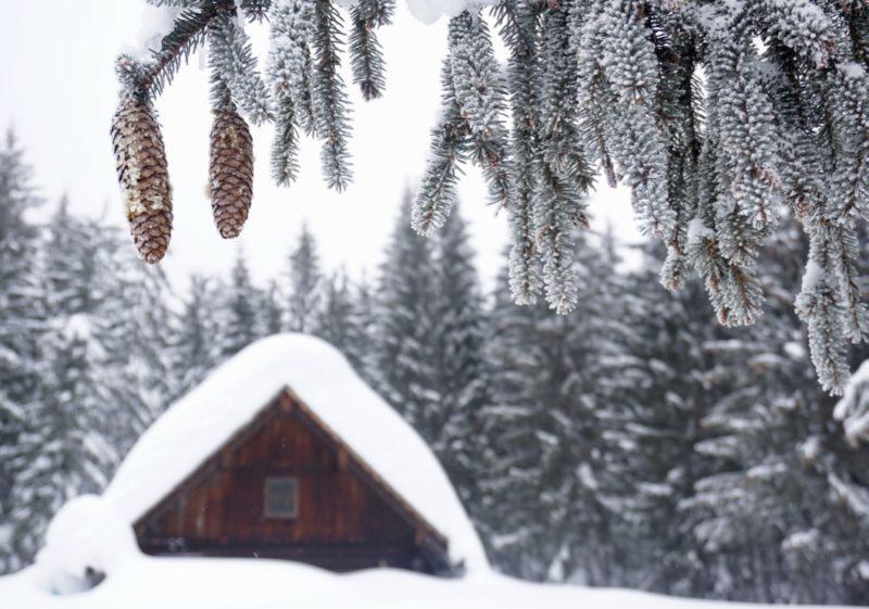 Idyllische Schneelandschaft im Dachstein Salzkammergut
