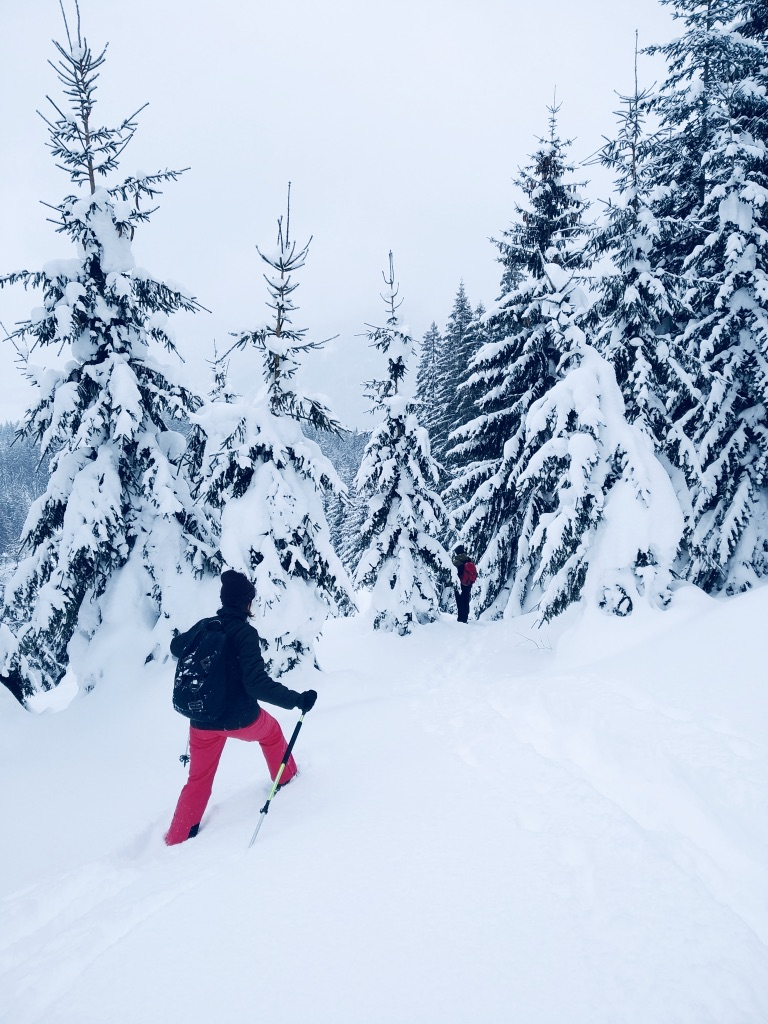 Schneeschuhwandern Tiefschnee im Dachstein Salzkammergut
