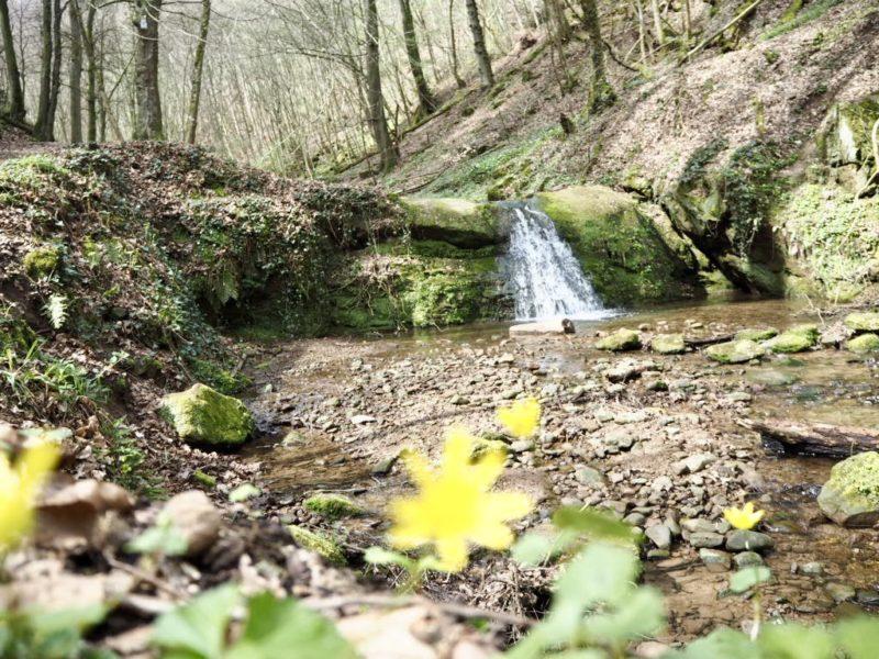 Wasserfälle im Butzerbachtal