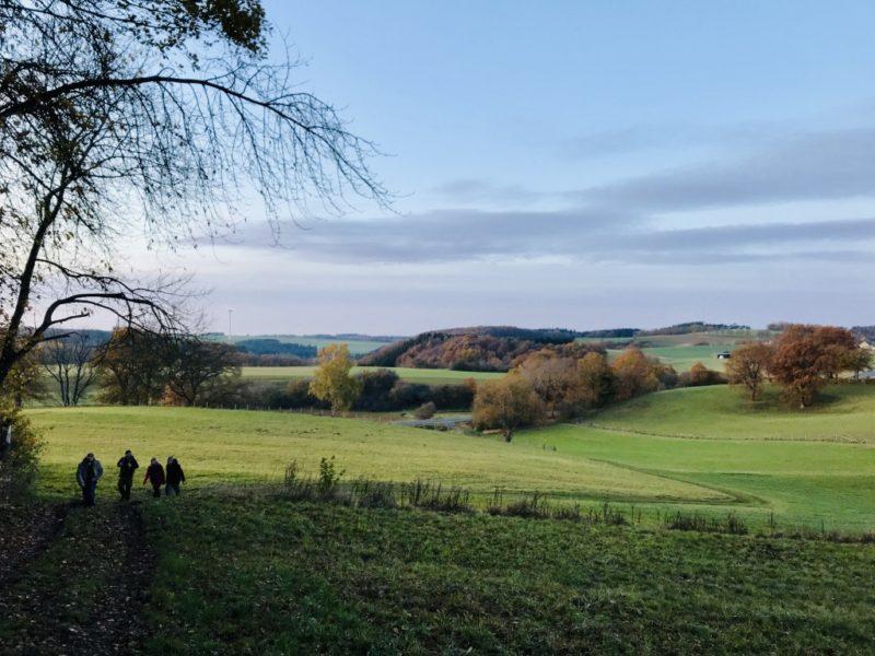 Eifelsteig Etappe 5, Richtung Kloster Steinfeld