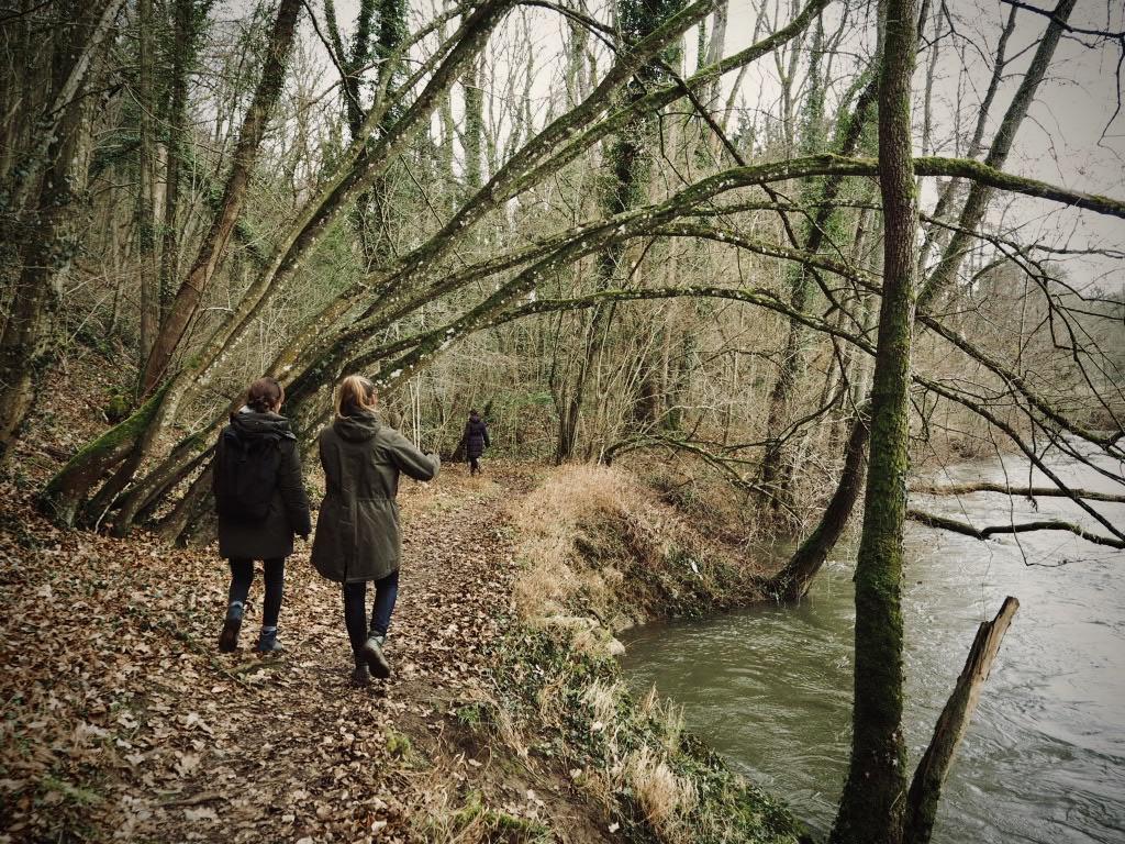Flusslandschaft des Viroin