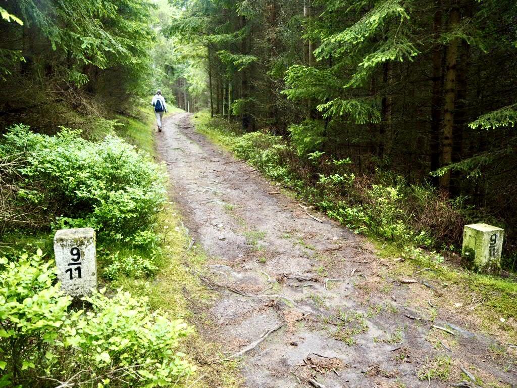 Im Niemandsland zwischen den Grenzsteinen, Oberpfälzer Wald