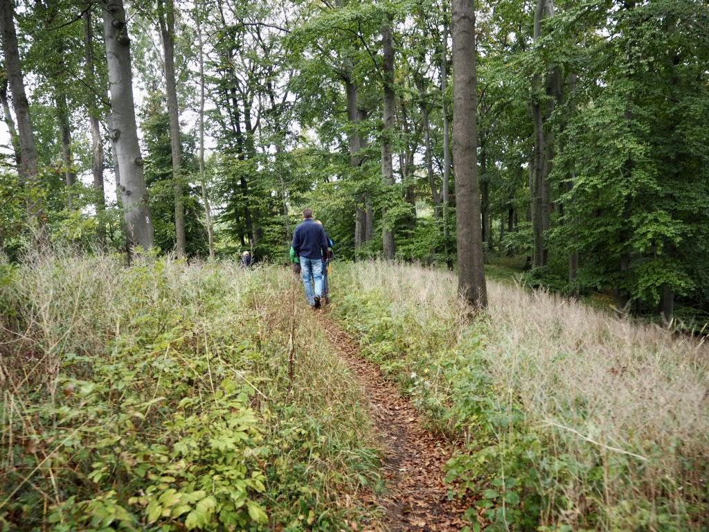 Wanderpfade im Naturschutzgebiet Teimer.
