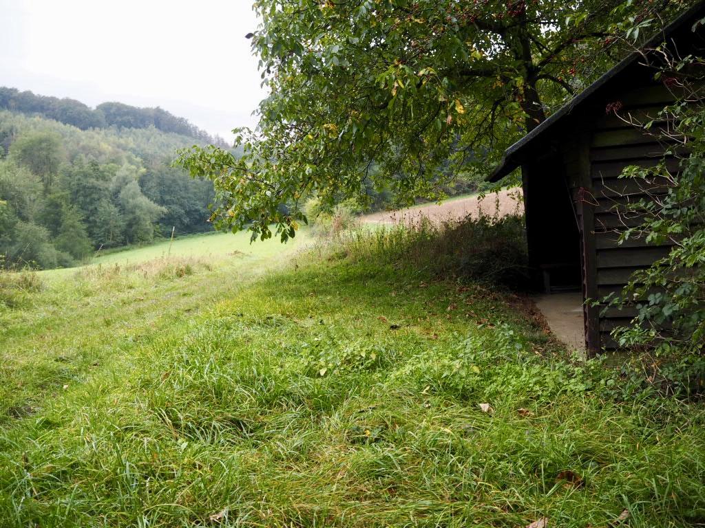 Natur im Kalletal