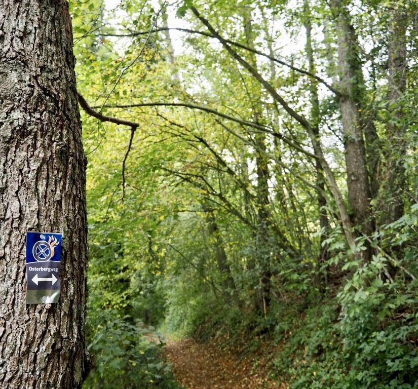Osterbergweg entlang des Eschenbachs