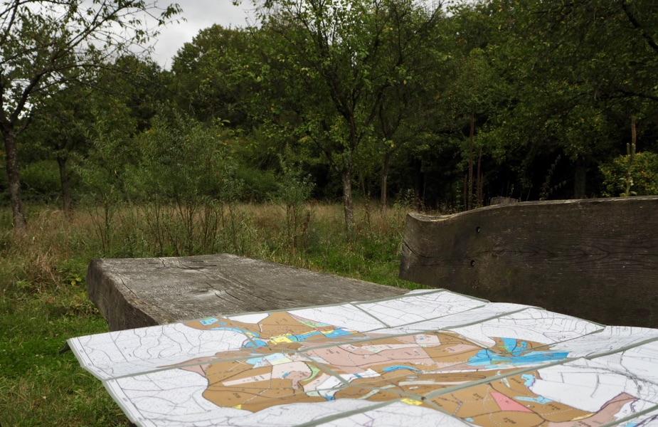 Rangerkarte: Baumbestände im Teutoburger Wald/Eggegebirge