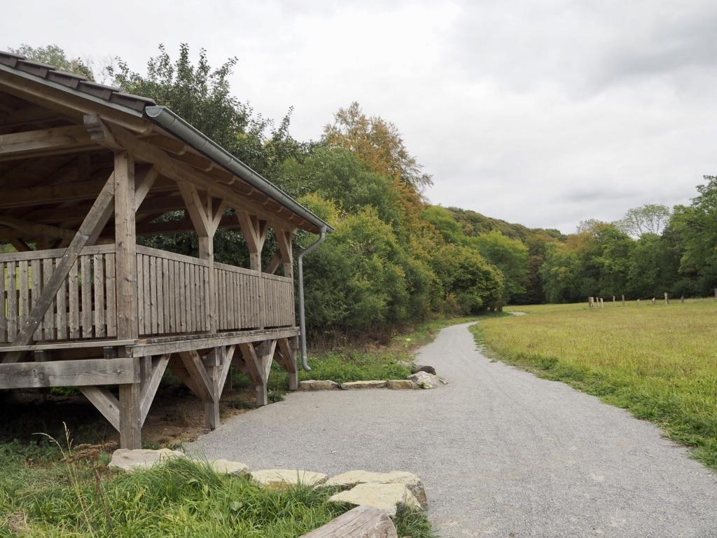 Barrierefreier Buchen-Wildnis-Pfad Teutoburger Wald/Eggegebirge